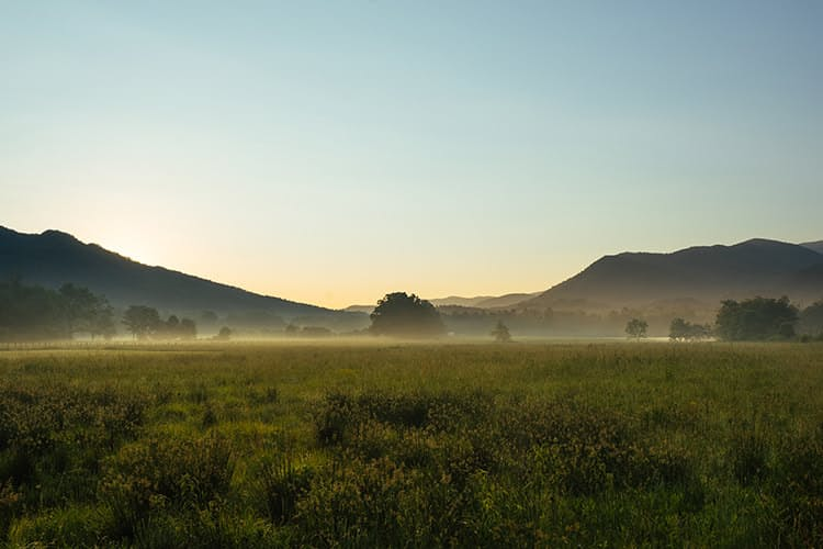 Huckberry great smoky mountain national park insider's guide kyle frost know before you go cades cove.jpg?ixlib=rails 2.1