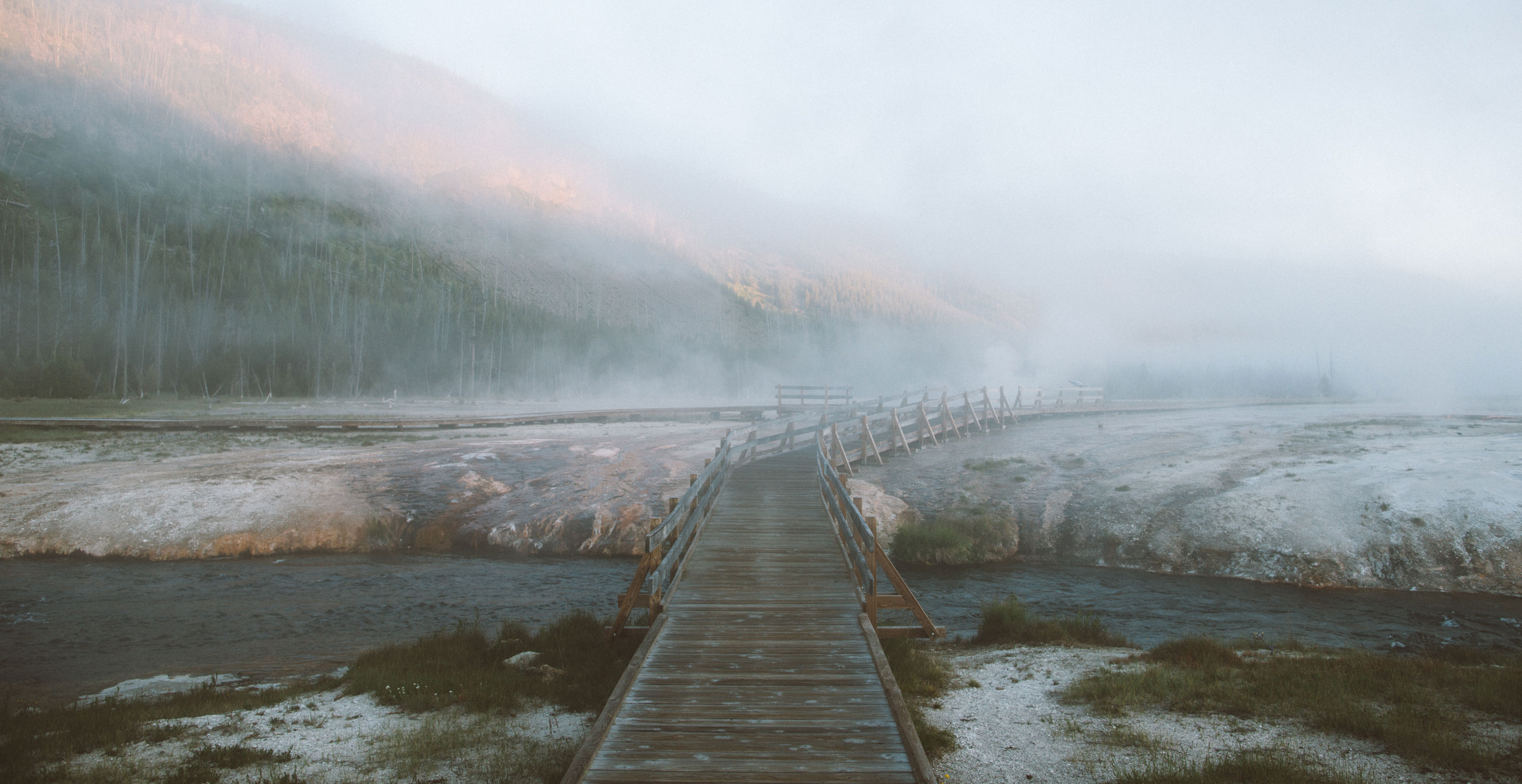 Insider's Guide to Yellowstone National Park