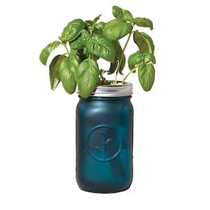 Organic Basil Garden Jar