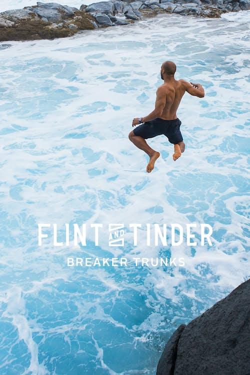 Flint And Tinder Breaker Trunks Huckberry