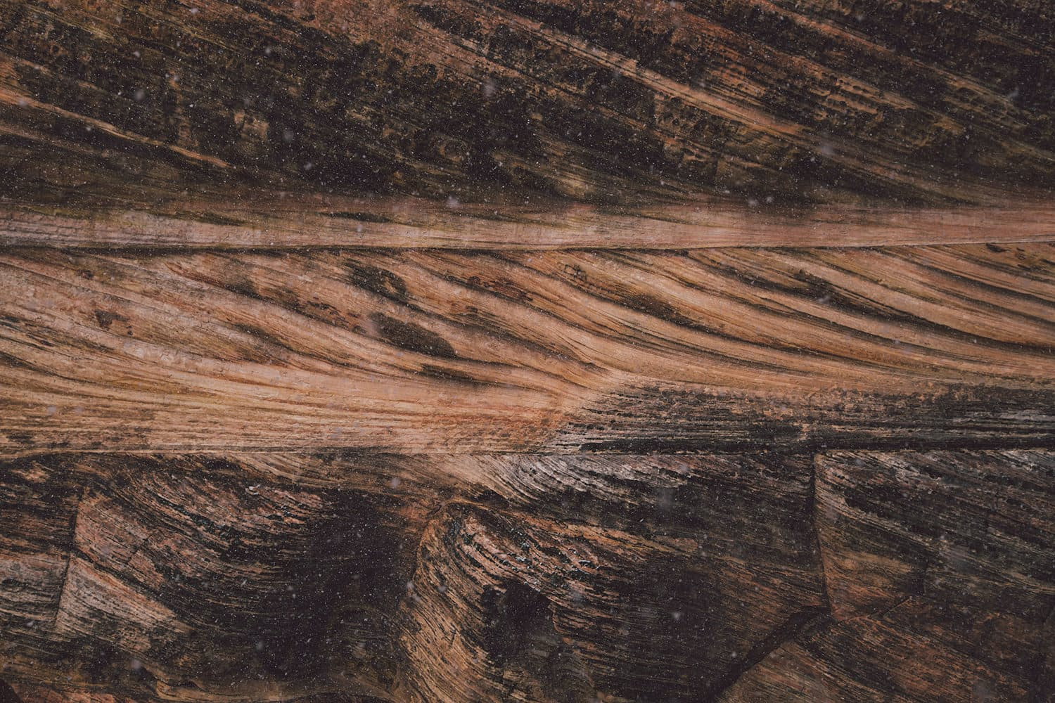 From the Cutting Room Floor: Zion National Park | Huckberry