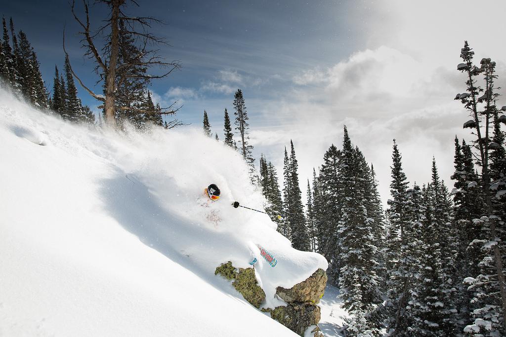 Jackson Skiing
