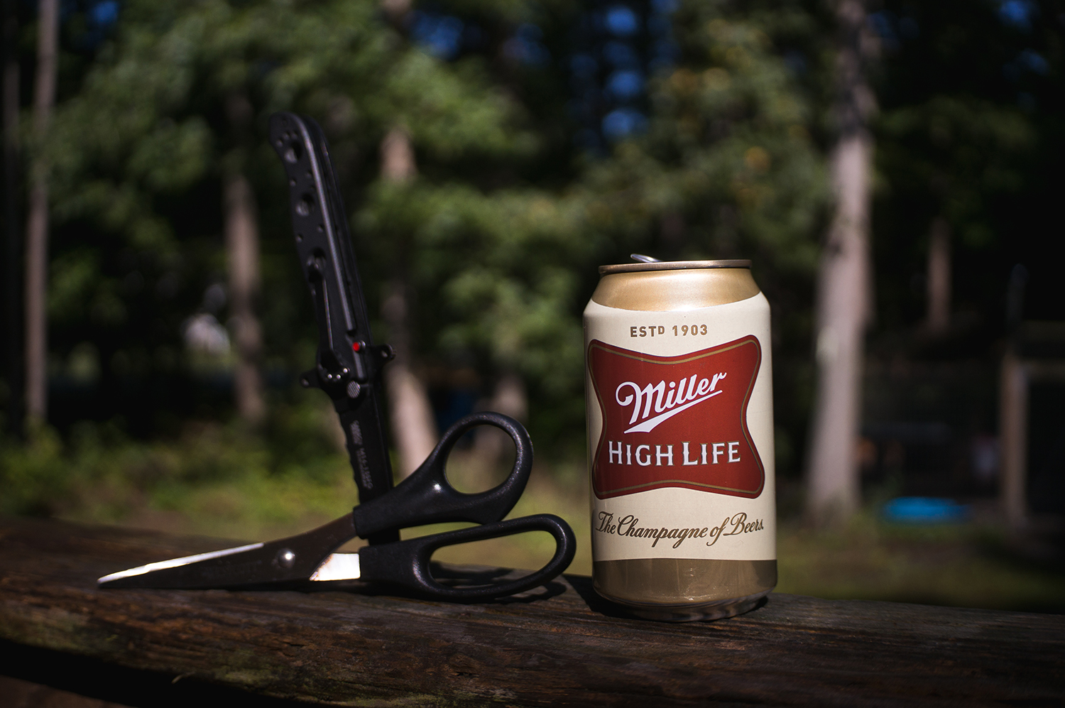 Items needed for the beer can camp stove