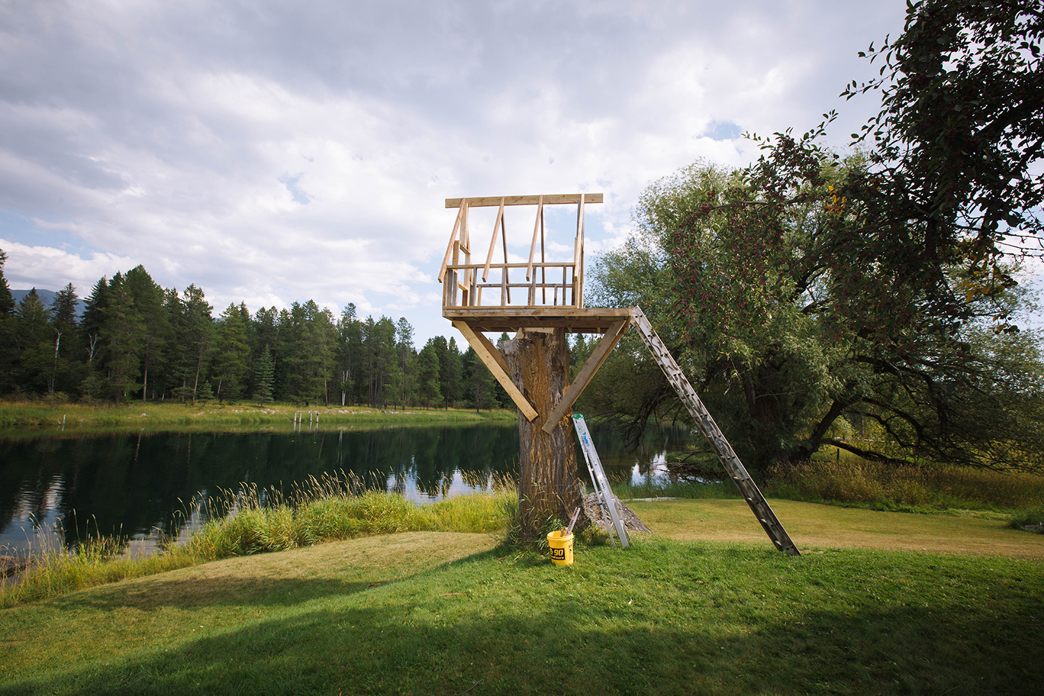 Isaac Johnston builds a treehouse for his kids