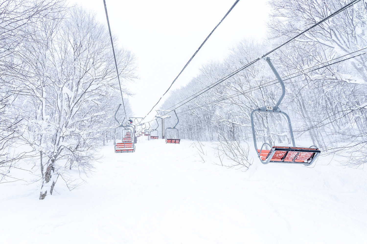 Inexpensive Lift Tickets