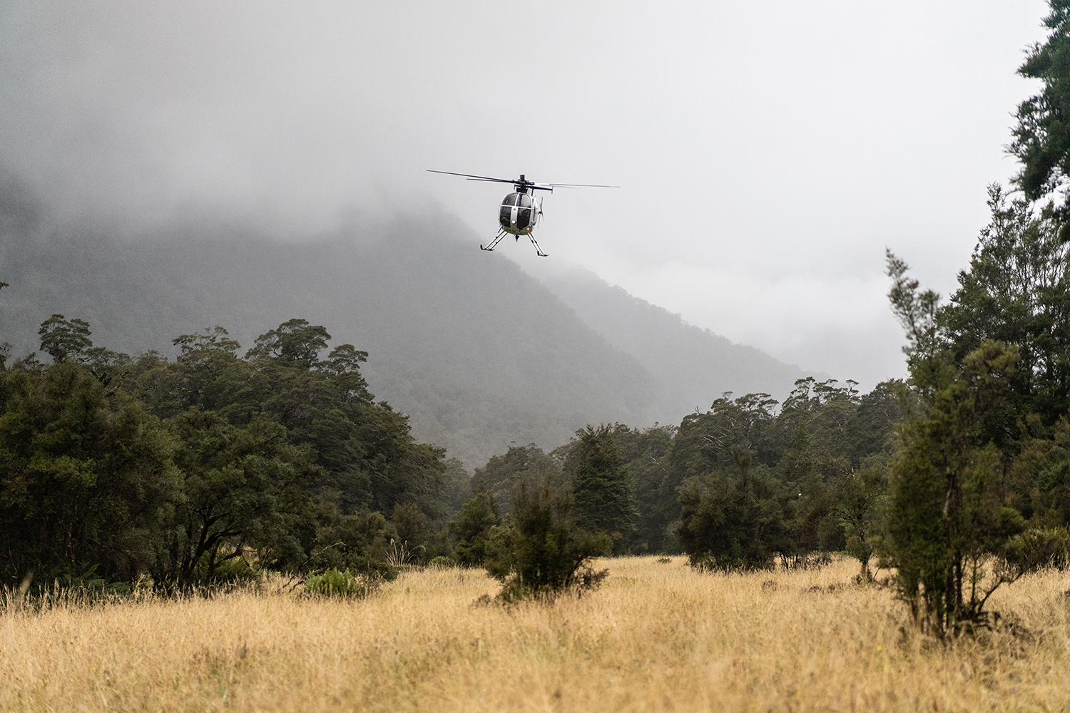 A helicopter in New Zealand's backcountry