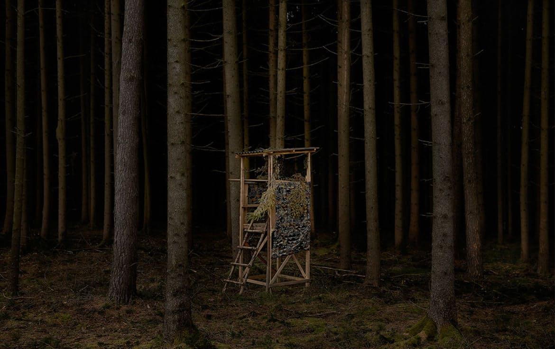 Hero treestands.jpg?ixlib=rails 2.1