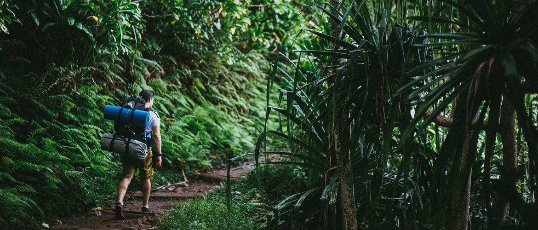 Hero hawaii hike header