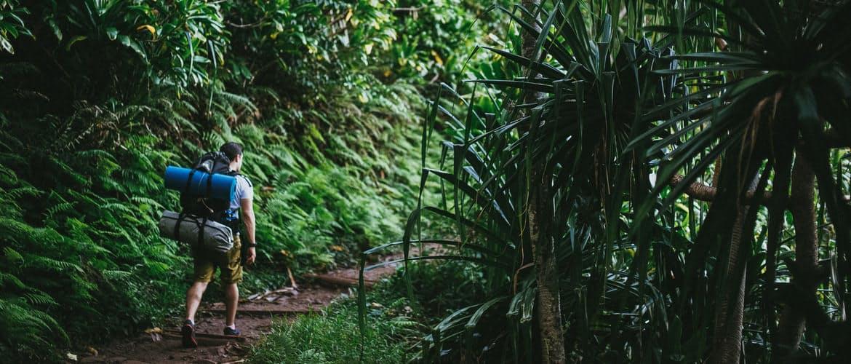 Hero hawaii hike header.jpg?ixlib=rails 2.1