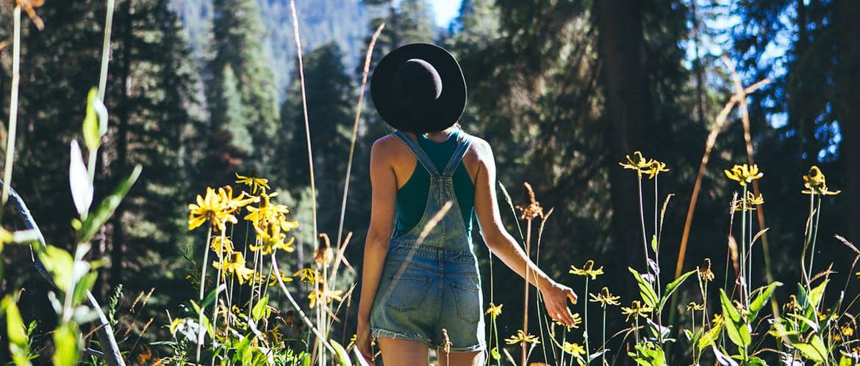 Hero huckberry sequoia natioanl park sell header.jpg?ixlib=rails 2.1