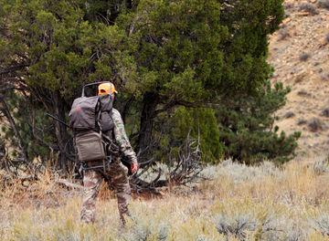 Tile huckberry wyoming hunt harvesting nature header