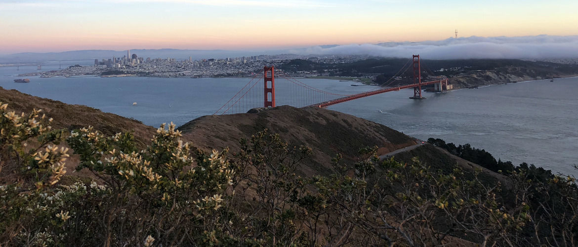 Featured we rounded up five of our favorite bay area hikes and the best spots to grab a cold one afterward