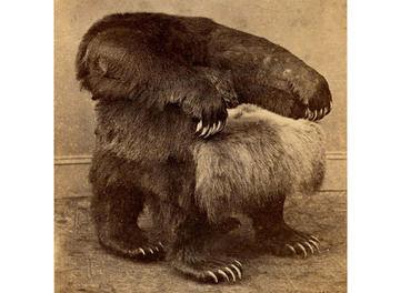 Tile bear