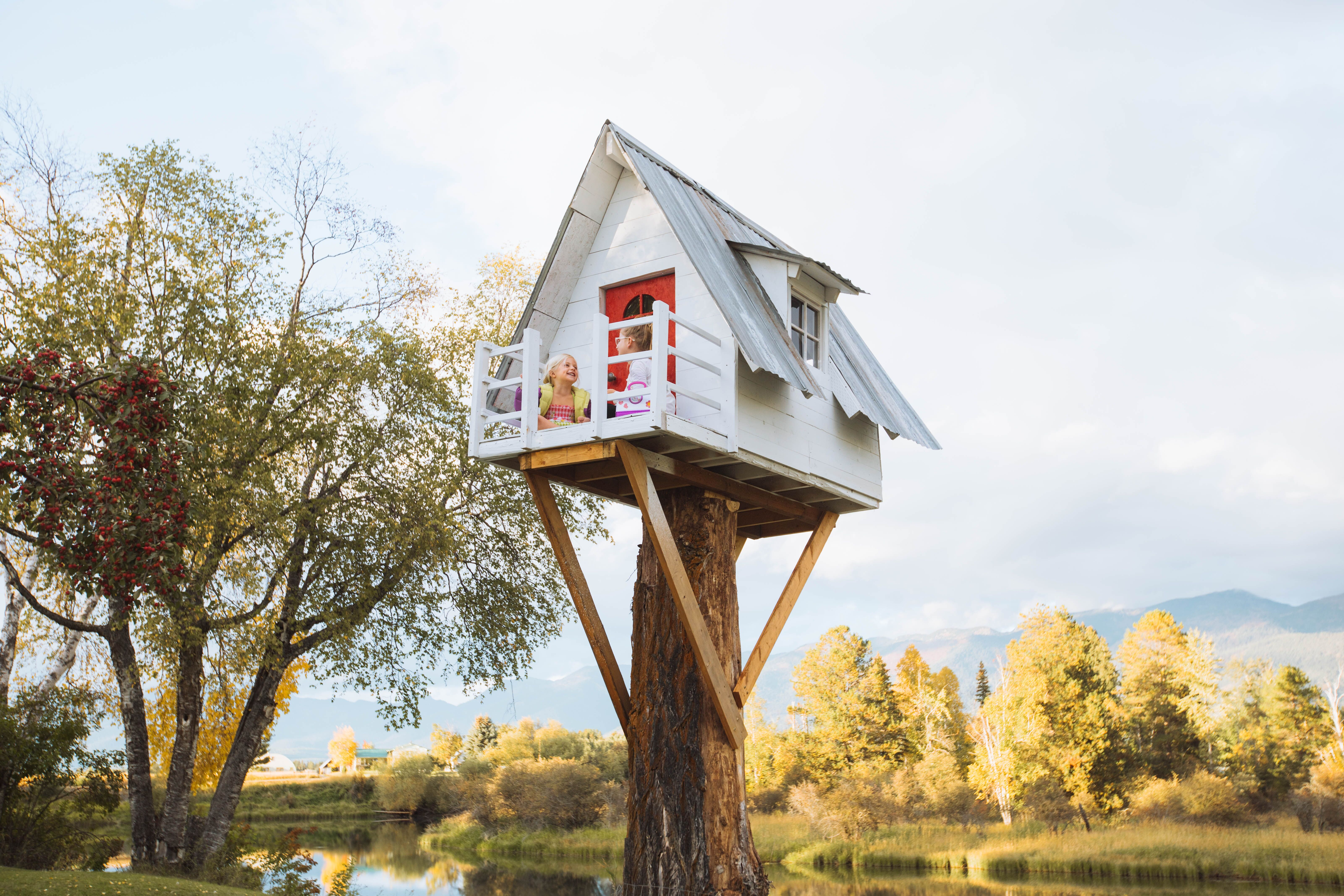 Isaac Johnston's treehouse